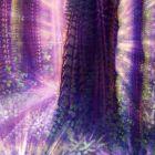 Rainbow grove  cover 1